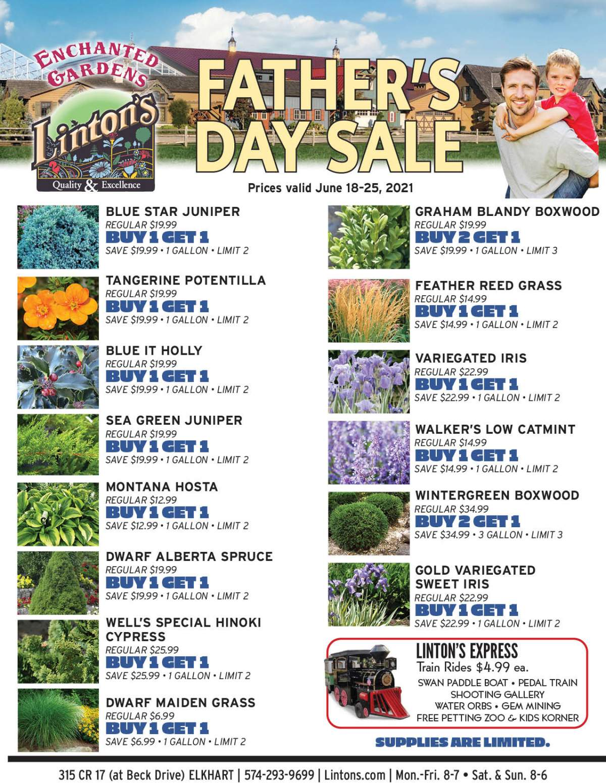 Fathers Day Plant Sale