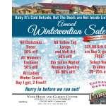 Wintervention Sale