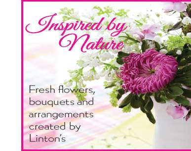 Linton's Enchanted Gardens : 213986