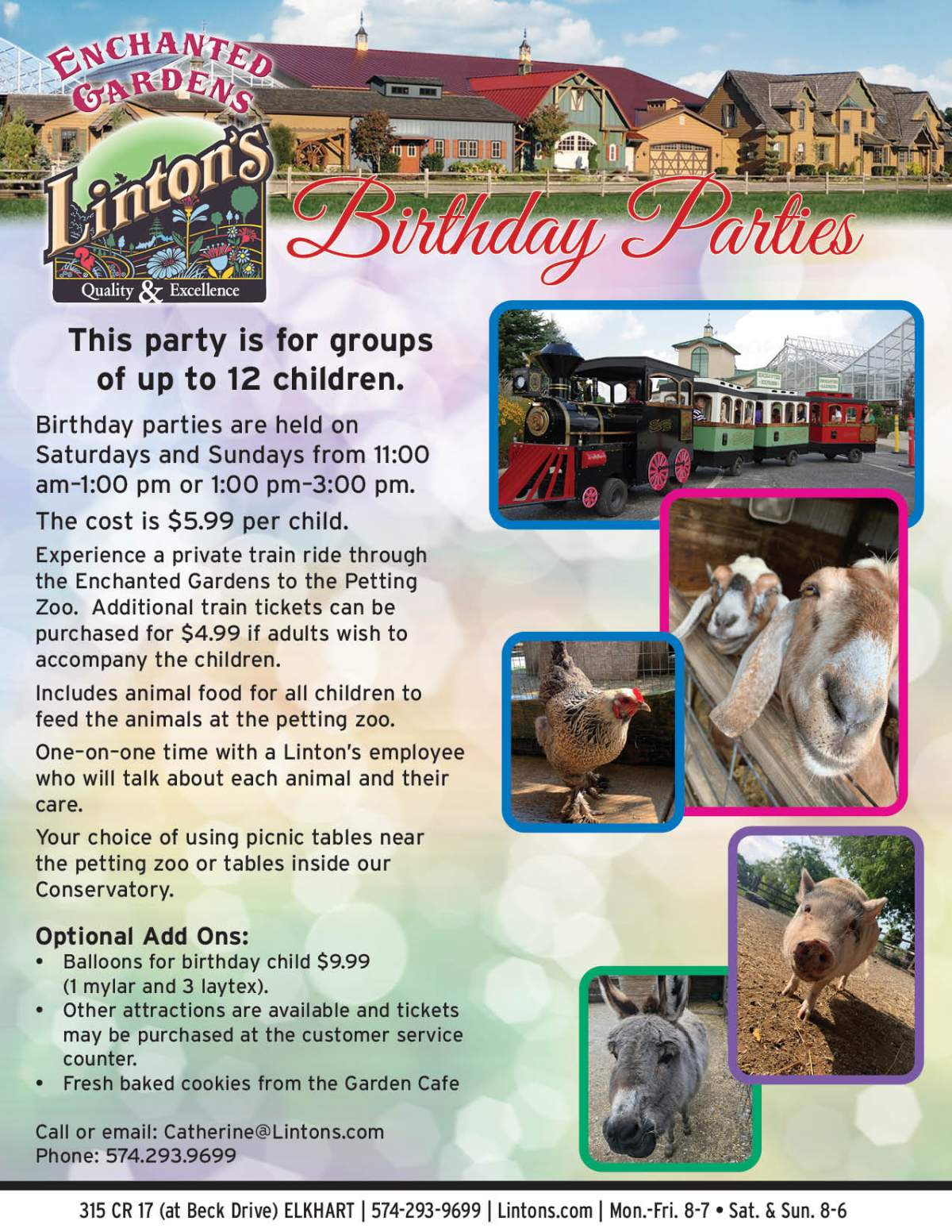 Enchanted Birthday Party Flyer